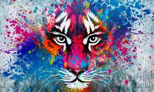 Бумага, краски и вдохновение