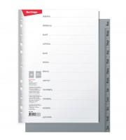 Разделитель листов Berlingo А4, 12 листов, Январь-Декабрь, серый, пластиковый